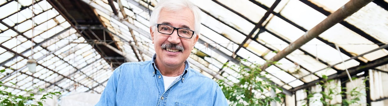 Waist up portrait of cheerful mature worker standing at shelf with plants and applying fertilizer into their soil in hothouse